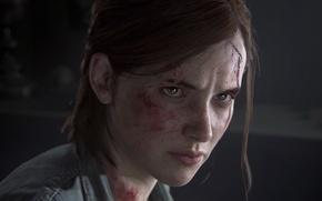 Обои Элли, Game, Naughty Dog, Ellie, Одни из Нас, Sony Computer Entertainmen, The Last of Us ...