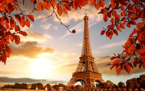 Обои river, Франция, Париж, France, leaves, cityscape, autumn, Paris, Eiffel Tower, осень