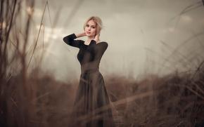 Картинка трава, юбка, портрет, фигура, прическа, блондинка, блузка, красивая, на природе, позирует, в черном, боке