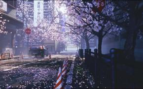 Картинка авто, цветы, город, улица, весна, сакура