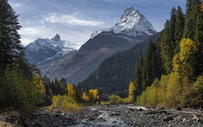 Картинка осень, лес, горы, Кавказ, домбайское ущелье, Вершина Белалака
