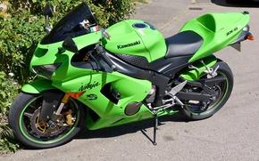 Картинка green, Асфальт, мотоцикл, байк, кусты, motorcycle, superbike, sportbike, Kawasaki Ninja ZX-6R, фон улица
