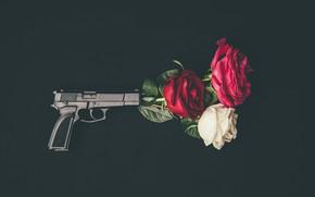 Картинка цветы, пистолет, розы, бутоны