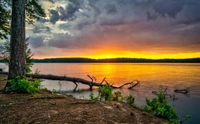 Картинка США, лес, река, небо, рассвет, Georgia, деревья, West Point Lake, тучи