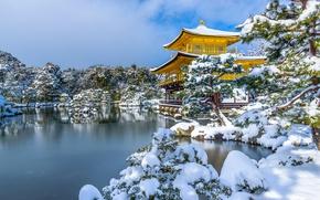 Картинка зима, снег, деревья, пруд, парк, Япония, храм, Japan, Kyoto, Киото, Golden Pavilion, Золотой павильон, Kinkaku-ji, …