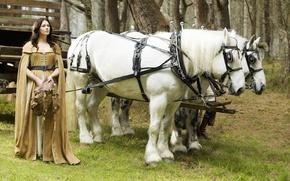 Картинка лошади, horse, Легенда об Искателе, Legend of the Seeker, Bridget Regan, Кэлен Амнелл, Kahlan Amnell, …