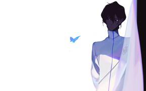 Картинка бабочка, аниме, арт, парень, Archer, Fate stay night, арчер