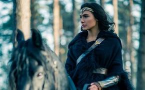 Обои cinema, film, brunette, horse, woman, movie, Wonder Woman, DC Comics, Gal Gadot