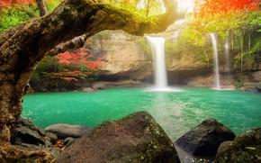 Картинка лес, деревья, парк, камни, водопад, Таиланд, Suwat Waterfall, Khao Yai National Park