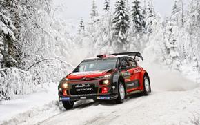 Обои Зима, Авто, Снег, Лес, Спорт, Машина, Гонка, Ситроен, Citroen, Автомобиль, WRC, Rally, Ралли, Kris Meeke, ...