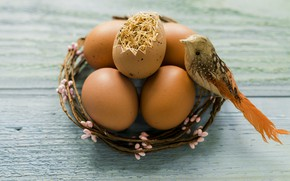 Картинка птичка, Праздник, венок, пасха яйца