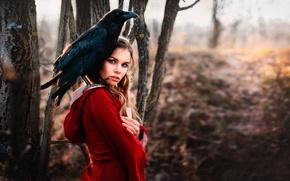 Картинка лес, Лиза Ласточкина, в красном, ворон, взгляд, ворон Ричард