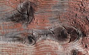 Картинка дерево, текстура, доска