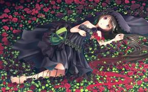 Картинка цветы, розы, Девушка, аниме, арт