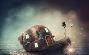 Картинка цветы, окна, улитка, шляпа, фонарь, домик