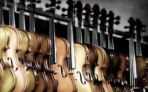 Обои музыка, фон, скрипки