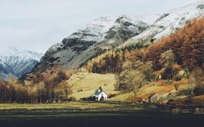 Обои лес, горы, природа, домик