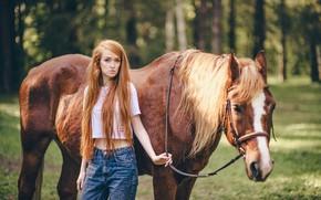 Картинка лето, девушка, волосы, лошадь, рыжая, прогулка