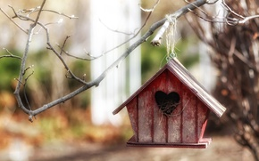 Обои природа, домик, ветка, дерево