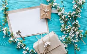 Картинка цветы, ветки, подарок, apple, весна, white, белые, яблоня, wood, blue, blossom, flowers, romantic, gift, spring, …