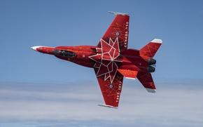 Обои Hornet, Хорнет, небо, истребитель, CF-18, дизайн