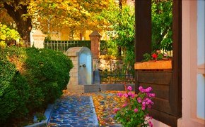 Картинка Цветы, Осень, Fall, Листва, Flowers, Autumn, Leaves, Дворик