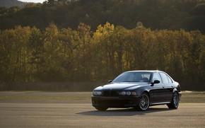 Картинка BMW, Black, Autumn, E39