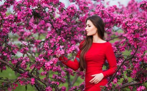 Картинка девушка, цветы, красота, весна, сад, woman, young, beautiful, Spring, Happy, touch