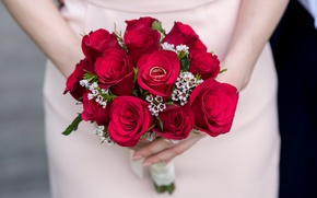 Картинка цветы, розы, букет, кольца, красные, свадьба, помолвка