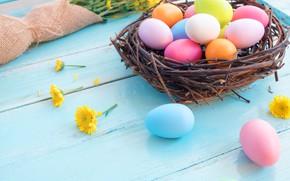 Картинка цветы, праздник, яйца, весна, пасха, гнездо