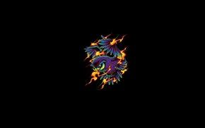 Картинка огонь, пламя, сова, крылья