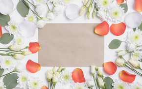 Картинка Цветы, Лепестки, Розы, Хризантемы, Эустома