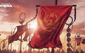 Картинка воины, вымпел, Total War Arena, promo arts, регалии