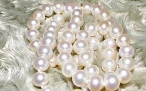 Картинка свет, блеск, жемчуг, бусы, украшение, драгоценности, белый мех, жемчужное ожерелье, борода Деда Мороза