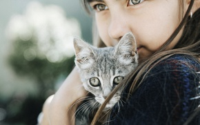 Картинка кошка, кот, взгляд, девочка, котёнок, боке