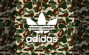 Картинка мода, adidas, style, brand, hape, моды, aape