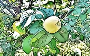 Картинка зелень, рендеринг, дерево, листва, рисунок, фрукт, витраж, плод, айва на ветке