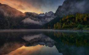 Обои лес, горы, природа, туман, озеро