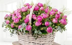 Обои листья, корзина, розы, colorful, нежные, розовые, бутоны, beautiful, Roses, lovely, basket, wicker