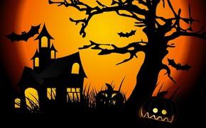 Картинка ночь, луна, хеллоуин