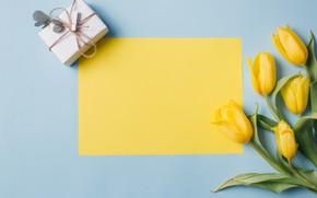 Картинка цветы, Фон, flowers, подарок, Весна, Tulips, Background, Spring, Тюльпаны