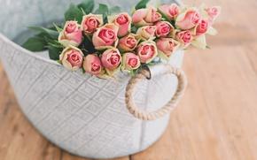 Картинка цветы, коробка, розы, букет