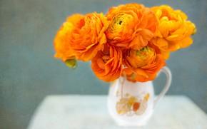 Обои Ранункулюсы, кувшин, букет, текстура, оранжевые