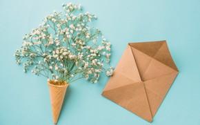 Картинка цветы, фон, white, белые, рожок, flowers, конверт, вафля, spring