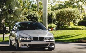 Картинка BMW, Green, Front, E39, Silver