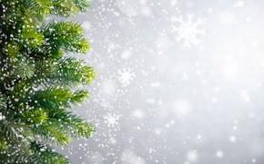 Картинка зима, снег, снежинки, елка, Новый Год, Рождество, Christmas, winter, snow, Xmas