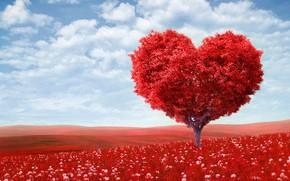 Картинка Красота, День Валентина, Природа Аллея