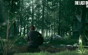 Картинка The last of us, the last of us part 2, artfan