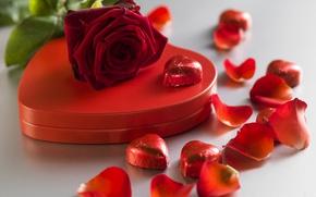 Обои красные розы, valentine`s day, love, шоколад, roses, romantic, gift, сердечки, конфеты, heart, red