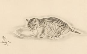 Картинка кот, молоко, миска, пьёт, 1929, лакает, Цугухару, Фудзита, Книга Кошек